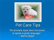 Pet Care Tips 2