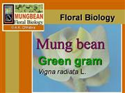 Flower structure of mungbean
