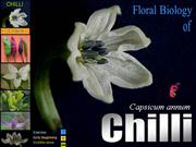 Flower structure of chilli