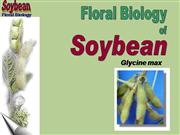 Flower Structure of soybeans