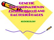 GENETIC RECOMBINATION IN Escherichia coli AND BACTERIOPHAGES