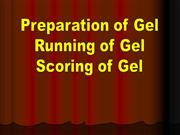 GEL PREPARATION AND RUNNING
