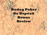 Bodog Poker No Deposit Bonus Code Reviewed
