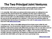 The Two Principal Joint Ventures 2