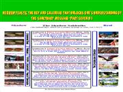 THE HEBREW CALENDAR PART 7. ppt