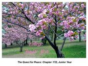The Quest for Peace Chapter 17D