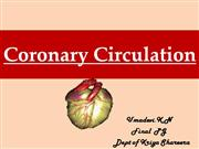 Coronary circulation