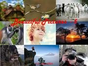 Beautiful_Pictures_-_5
