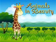 Animals in Beauty - part4