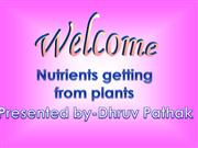 Nutrients from plants
