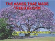 the ashes that made trees bloom