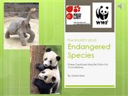 some of the world's most endangered animals