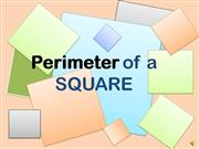 Finding the Perimeter of a Square