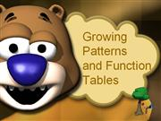 Growing Patterns and Function Tables