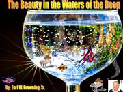 the beauty in the waters of the deep