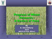 Progress of Wheat Research -A Review of Pusa