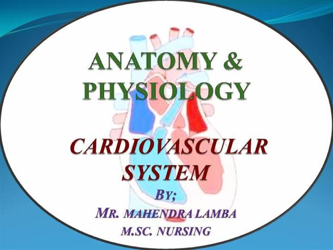 Cardiovascular System Ppt |authorSTREAM
