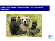 bears, foster homes, resourcefulness, love, and endless opportunity -
