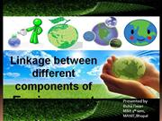 linkage between components of environment