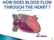ICT-how does blood flow through the heart