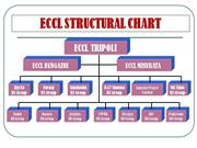 ECCL STRUCTURAL ORG