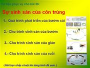Su sinh san cua con trung