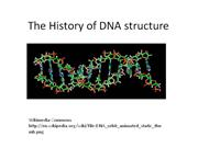 The History of DNA structure slide show