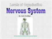 Human Anatomy Levels of Organization Nervous System