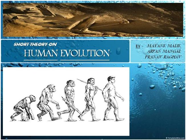 Timeline of evolution of man.