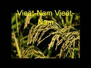 Viet Nam-Viet Nam