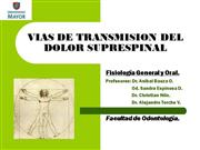 vias-del-dolor-7126 (PPTshare)