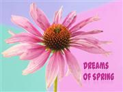Dreams of Spring - Amazing Flowers - part 2