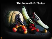 The Surreal Life Photos