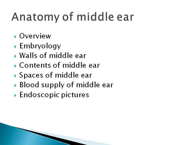 Anatomy Of Middle Ear Authorstream