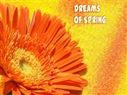 Dreams of Spring-Amazing Flowers (part 3)
