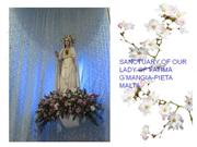 our lady of fatima!