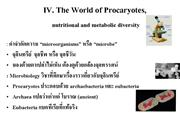 World of Prokaryote by Assoc.Prof. Abhinya