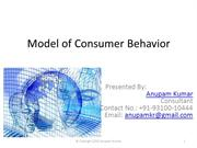 What is Model of Consumer Behaviour