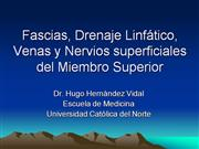 Fascias y Nervios superficiales del Miembro Superior