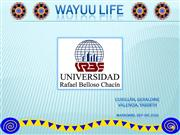 wayuu life (final project. level 5)