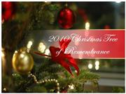 2010 christmas tree of remembrane program