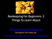 Beekeeping For Beginners - 2 Things To Learn About