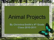 Animal Projects 2010-2011