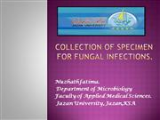 collection of specimen for fungal infections