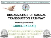 ORGANISATION OF SIGNAL TRANSDUCTION PATHWAY
