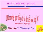 Nhung canh buom