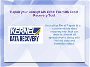Repair your Corrupt MS Excel File with Excel Recovery Tool