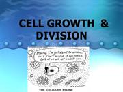 CELL DIVISION-Blackboard