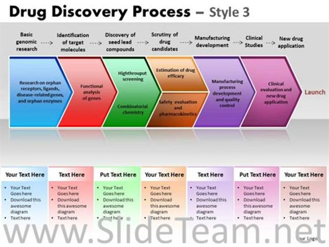 Drug Discovery Process Diagram-PowerPoint Diagram
