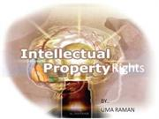 intelectual property rights (IPR)